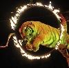 Цирки в Октябрьском